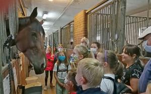 Dzieci przyglądają się koniowi w Klubie Jazdy Konnej Pod Żubrem.