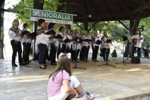 Zespół Niepołomiczanie występuje na scenie w parku.
