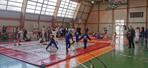 II Liga Combat Ju-Jutsu