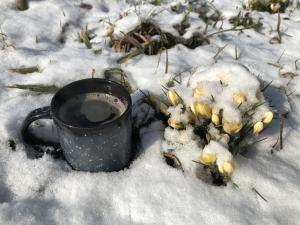Zdjęcie nagrodzone w konkursie fotograficznym W poszukiwaniu wiosny