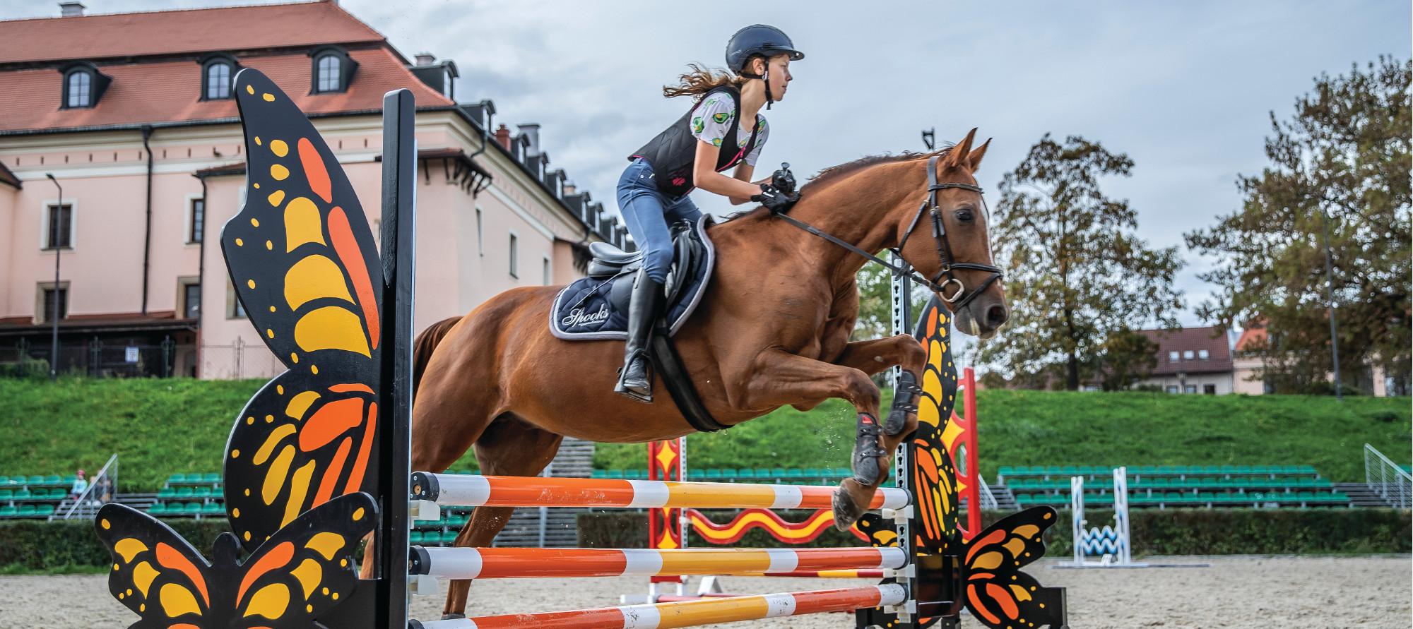 Zawodniczka KJK pod żubrem skacze na koniu przez przeszkody