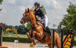 Puchar Niepołomic - zawody konne w skokach przez przeszkody